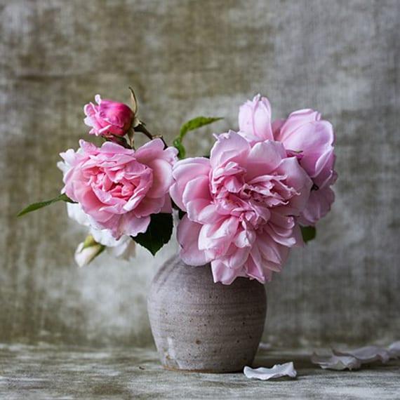 Colour Palette Inspiration – Pop of Pink